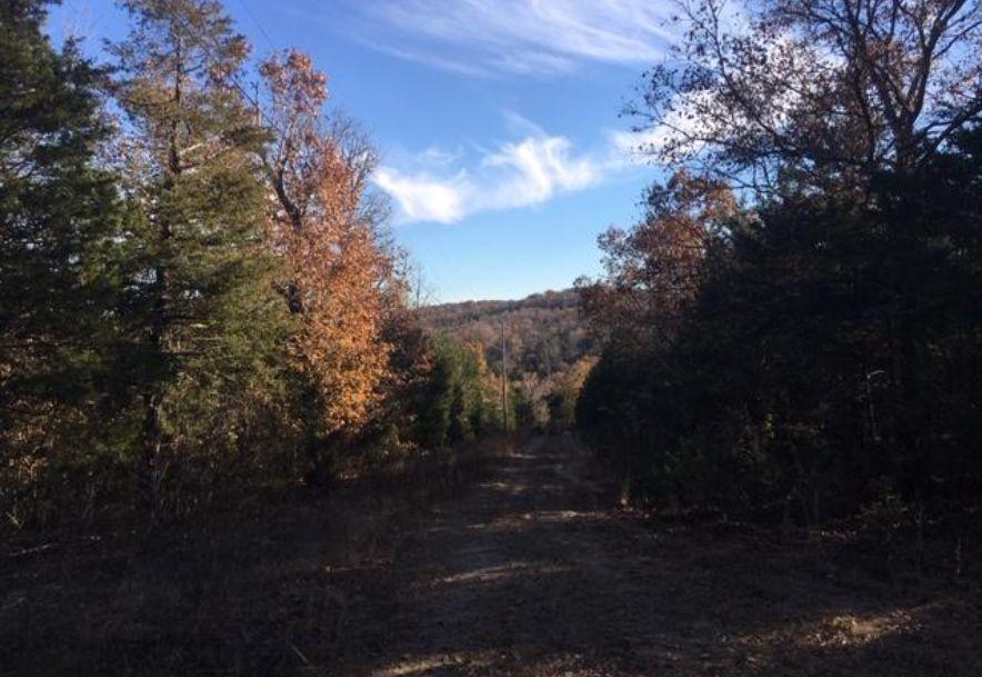1396 Brace Hill Road Kissee Mills, MO 65680 - Photo 3
