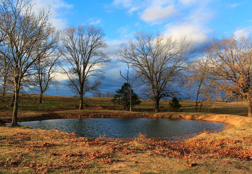 1244 Savage Road Kirbyville, MO 65679 - Photo 4