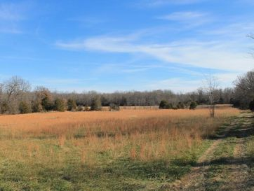 11824 County Road 8470 West Plains, MO 65775 - Image 1