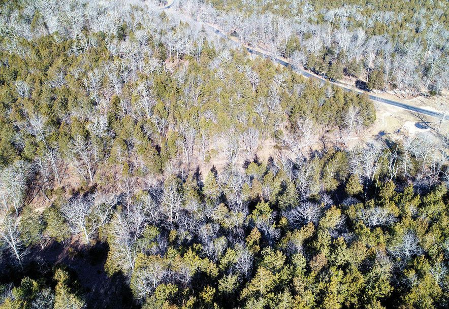 Tbd Lot 80a & Lot 82bb Cedar Bluff Saddlebrooke, MO 65630 - Photo 18