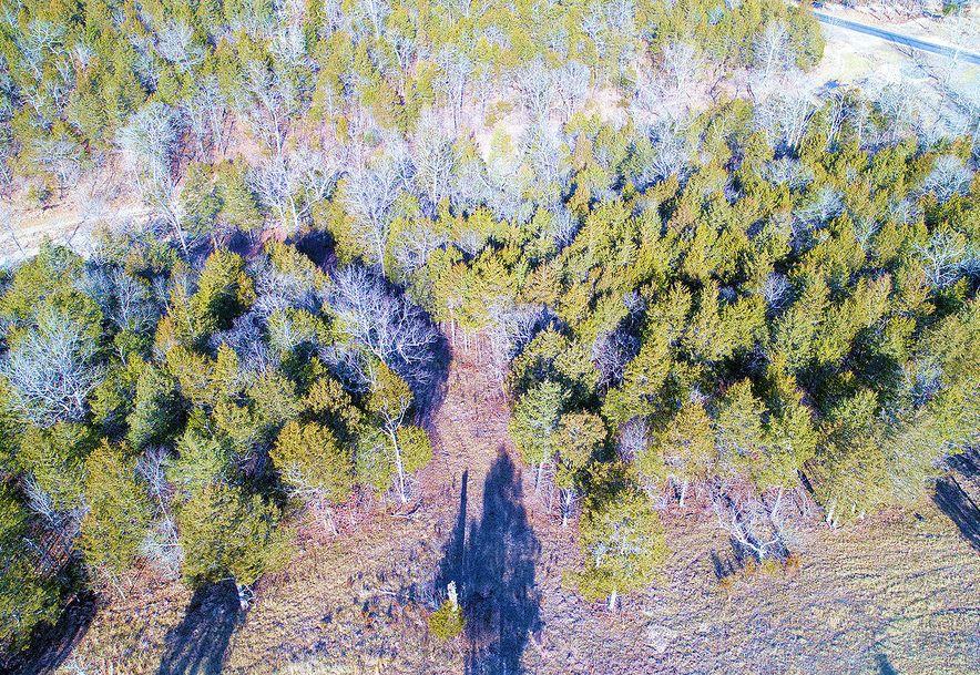 Tbd Lot 80a & Lot 82bb Cedar Bluff Saddlebrooke, MO 65630 - Photo 6