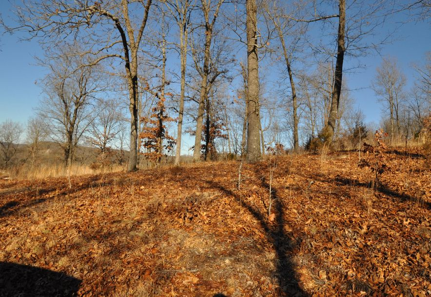 Lot 4 Woods Ridge Drive Highlandville, MO 65669 - Photo 1