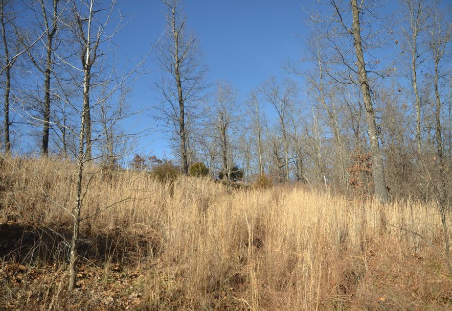 Lot 4 Woods Ridge Drive Highlandville, MO 65669 - Photo 2