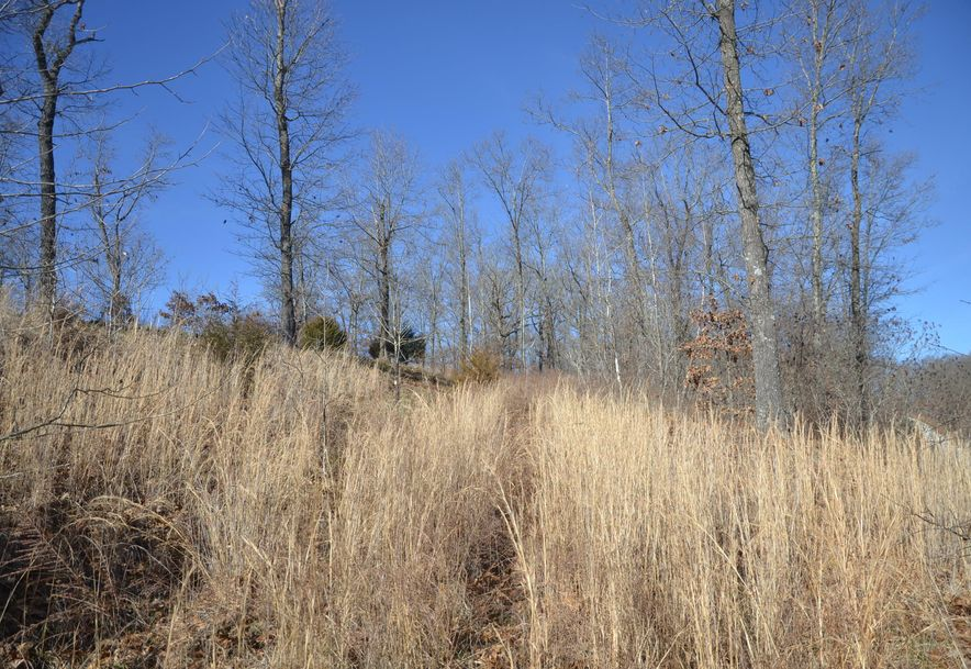 Lot 4 Woods Ridge Drive Highlandville, MO 65669 - Photo 4