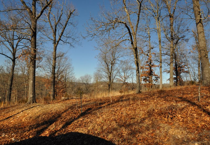 Lot 4 Woods Ridge Drive Highlandville, MO 65669 - Photo 5