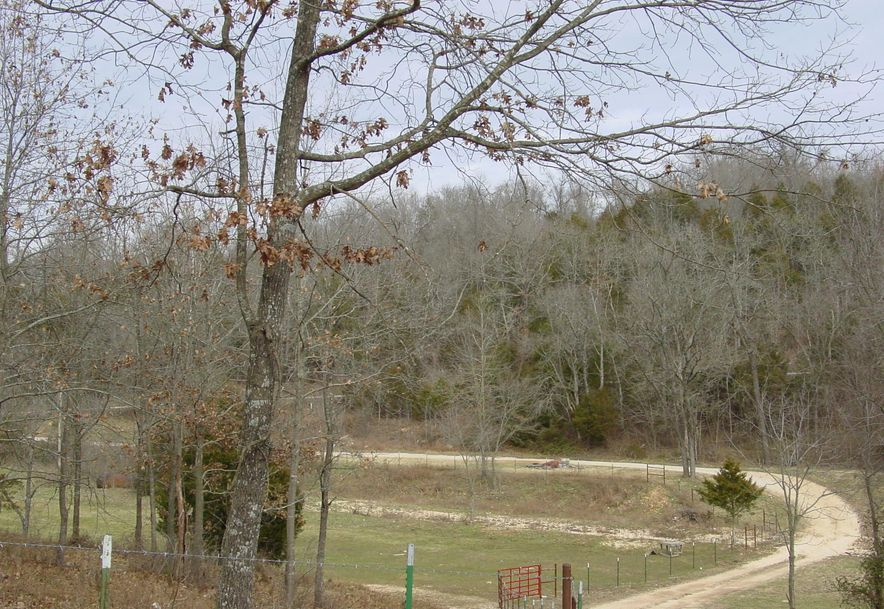 614 Holt Spring Rd. Marionville, MO 65705 - Photo 48