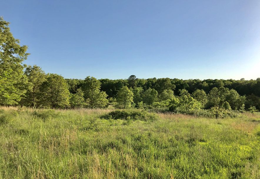 Tbd County Road 9030 West Plains, MO 65775 - Photo 6