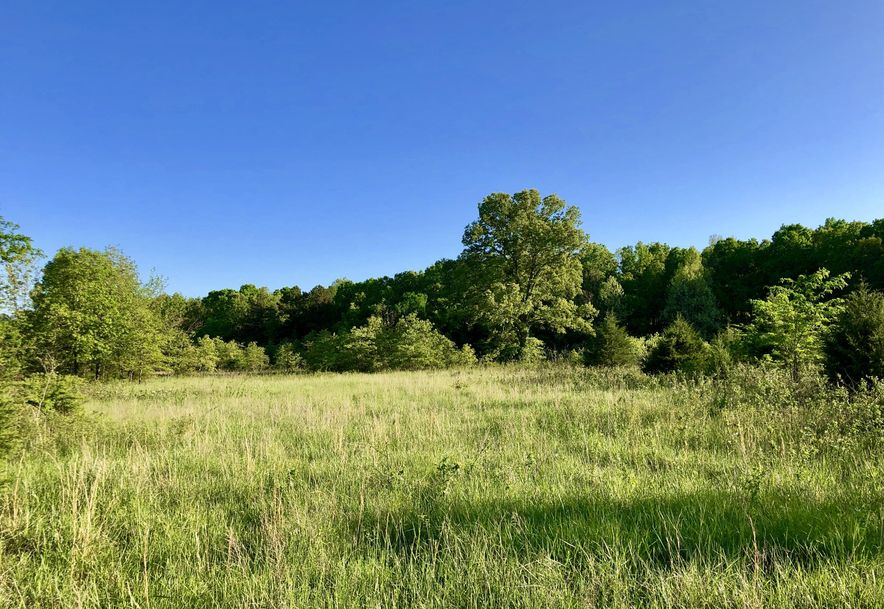 Tbd County Road 9030 West Plains, MO 65775 - Photo 8