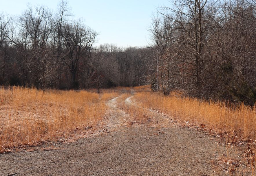 0 Listen Lane Tract 3 Clever, MO 65631 - Photo 1