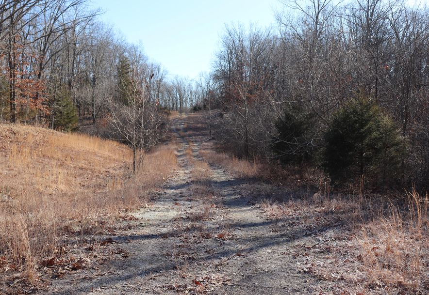 0 Listen Lane Tract 3 Clever, MO 65631 - Photo 4