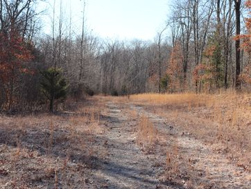 0 Listen Lane Tract 2 Clever, MO 65631 - Image 1