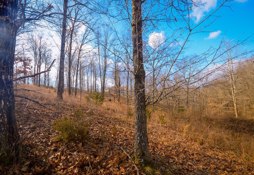 Lot 12 Woods Ridge Road Highlandville, MO 65669 - Photo 4