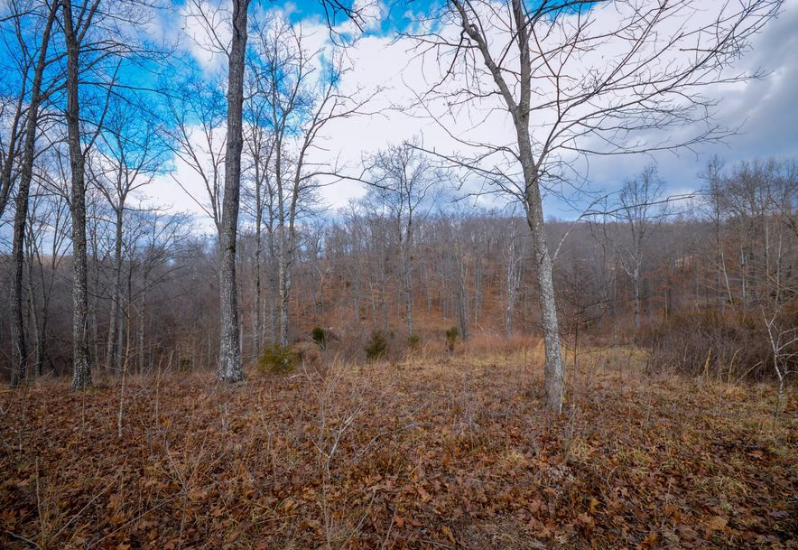 Lot 12 Woods Ridge Road Highlandville, MO 65669 - Photo 6