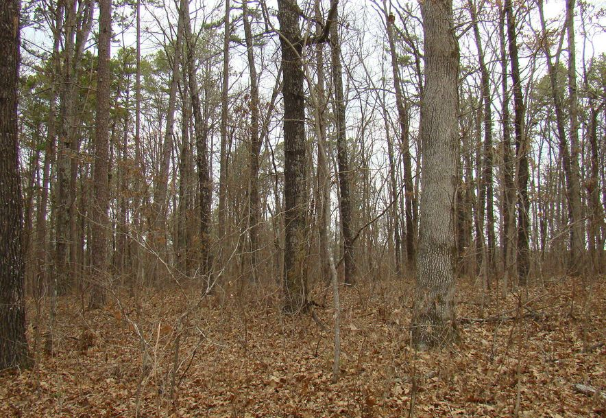 7923 County Road 5150 West Plains, MO 65775 - Photo 24