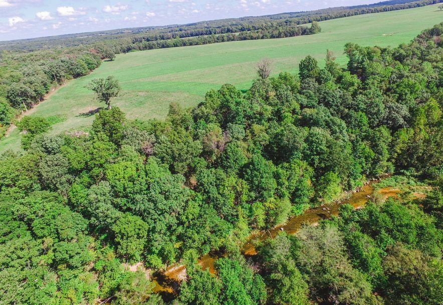 106 Briarwood Dr. Drive Long Lane, MO 65590 - Photo 82