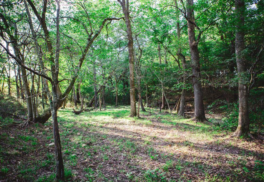 106 Briarwood Dr. Drive Long Lane, MO 65590 - Photo 93