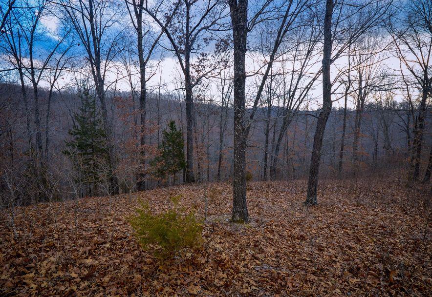 Lot 6 Woods Ridge Drive Highlandville, MO 65669 - Photo 3