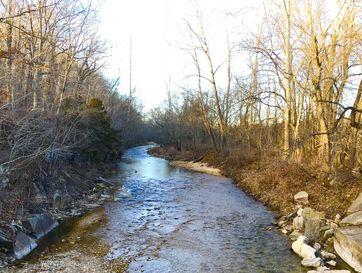 596 Little Creek Road Mountain Grove, MO 65711 - Image 1