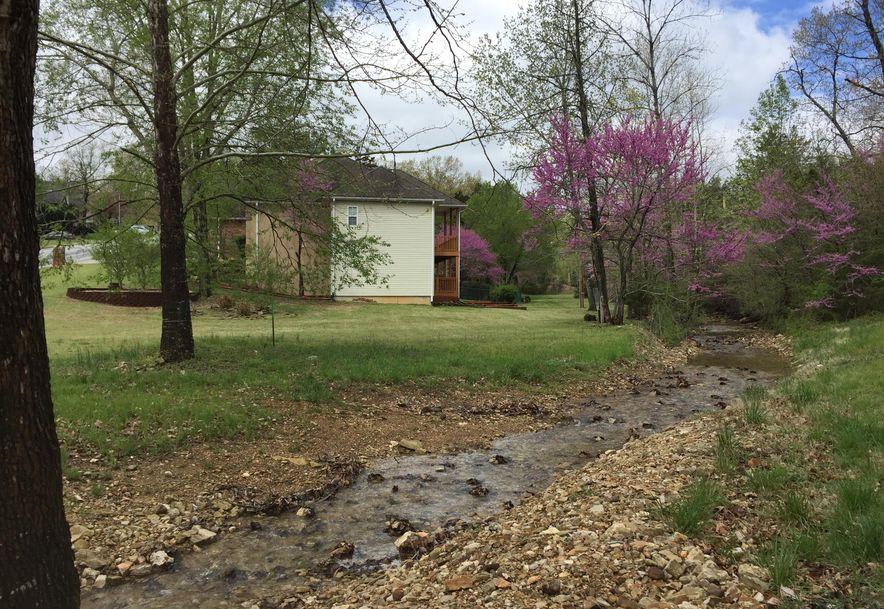 106 Briarcliff Road Branson, MO 65616 - Photo 49