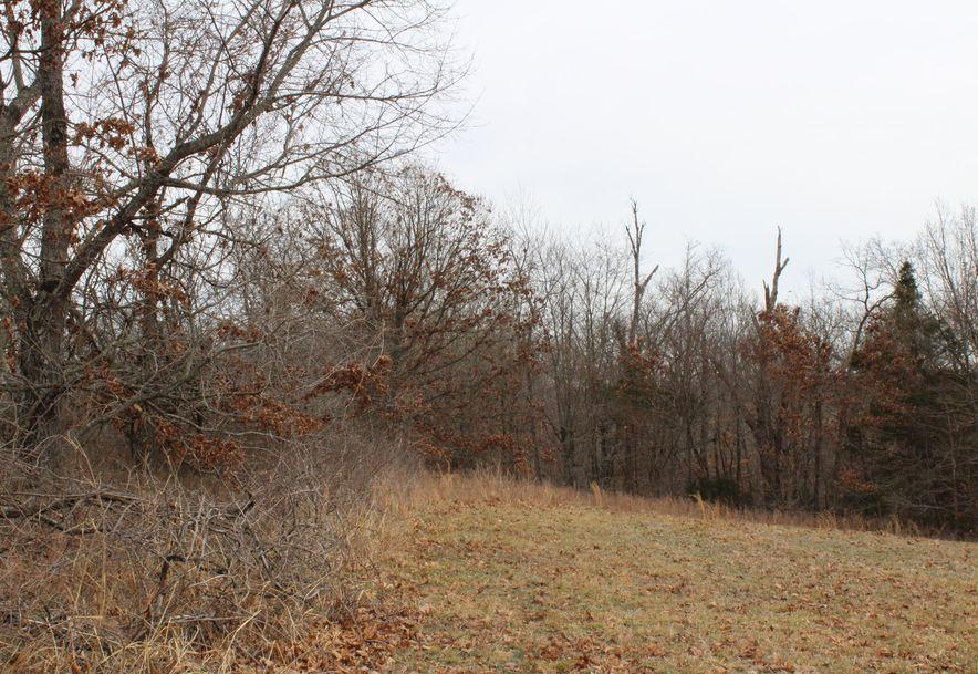 Xxx State Hwy 90 Noel, MO 64854 - Photo 7
