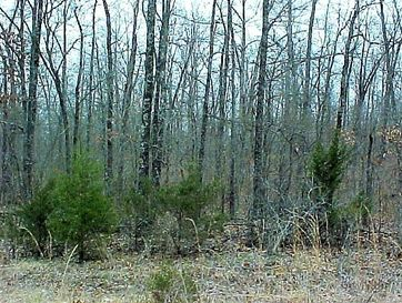 7833 Handcove Road Lot 8 Mountain Home, AR 72653 - Image 1