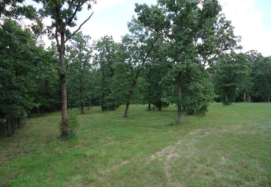 204 Ridgecrest Drive Saddlebrooke, MO 65630 - Photo 7