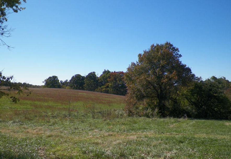 4645 North Farm Road 165 Springfield, MO 65803 - Photo 5