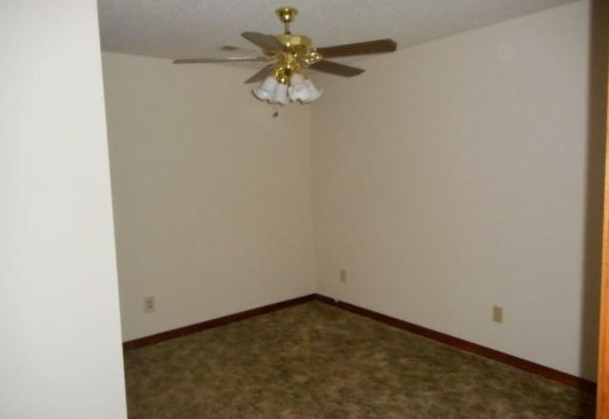 398 Old Mill Road Lampe, MO 65681 - Photo 19