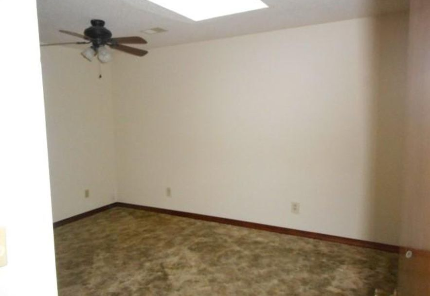398 Old Mill Road Lampe, MO 65681 - Photo 20