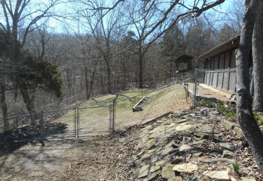 398 Old Mill Road Lampe, MO 65681 - Photo 5