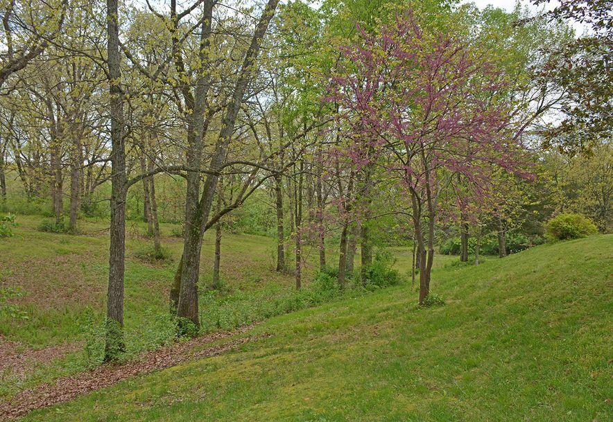 1411 Collins Road Ozark, MO 65721 - Photo 61