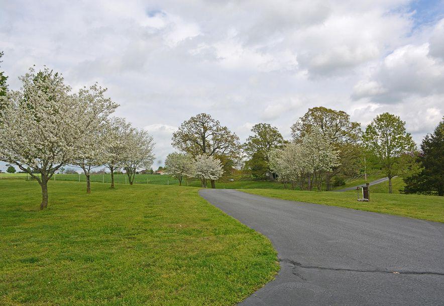 1411 Collins Road Ozark, MO 65721 - Photo 67