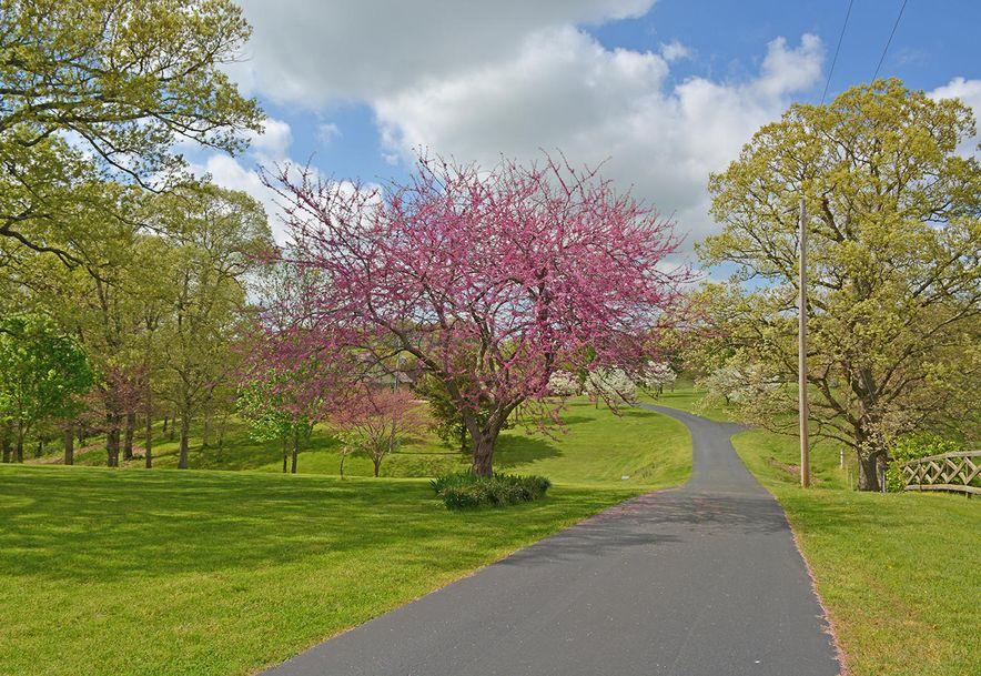 1411 Collins Road Ozark, MO 65721 - Photo 4