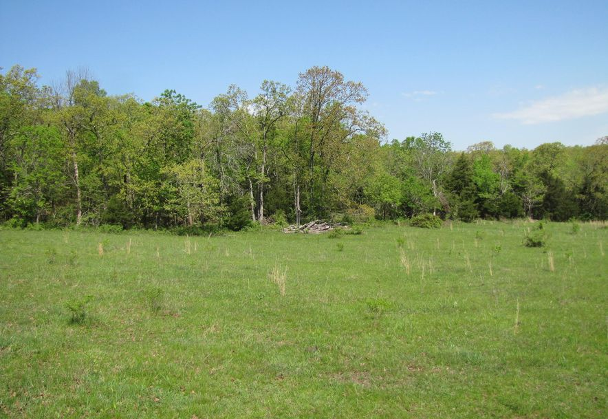 14938 Palace Road Plato, MO 65552 - Photo 63
