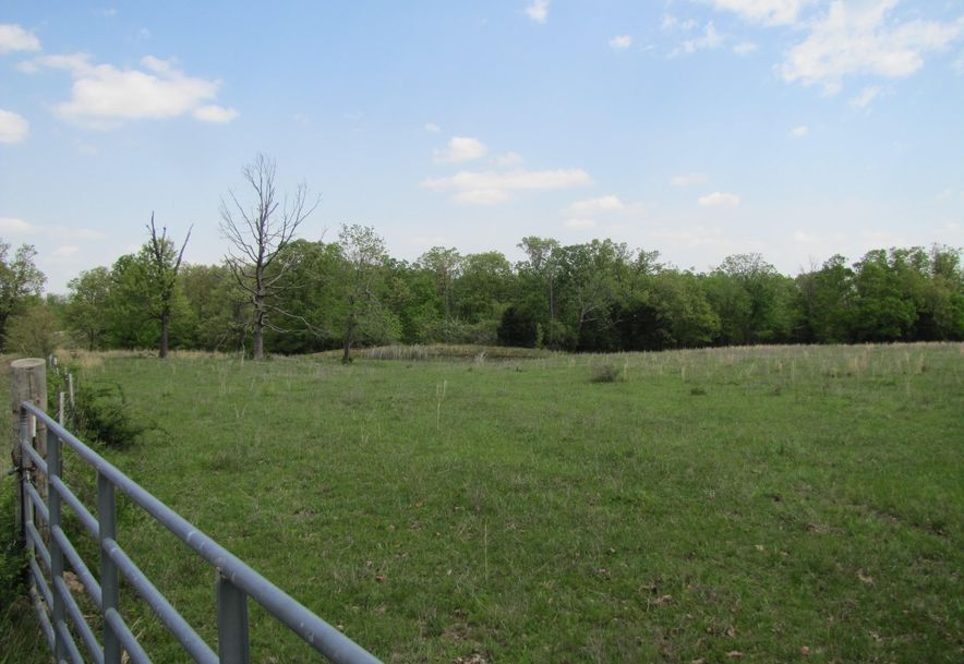 14938 Palace Road Plato, MO 65552 - Photo 77