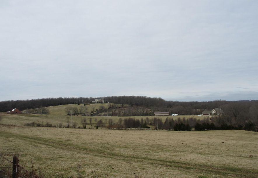 4398 South Farm Rd 193 Rogersville, MO 65742 - Photo 6