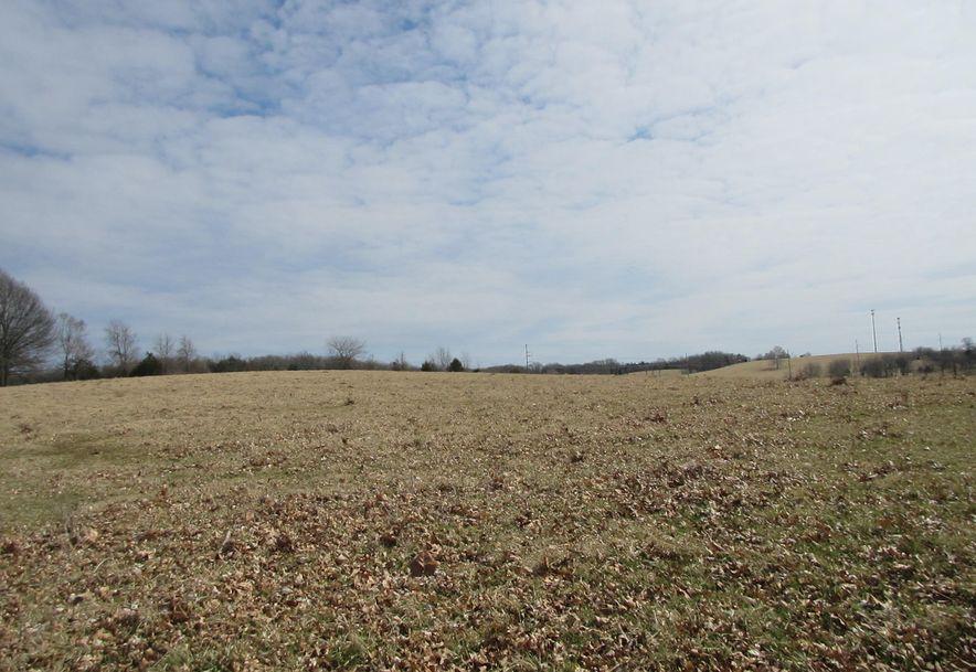 4398 South Farm Rd 193 Rogersville, MO 65742 - Photo 10