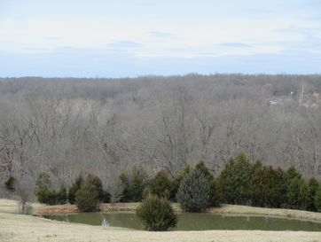 4398 South Farm Rd 193 Rogersville, MO 65742 - Image 1