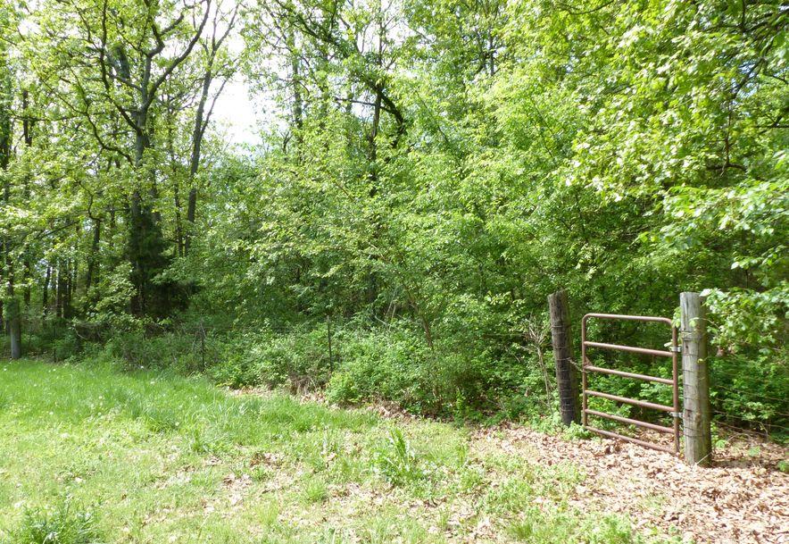11439 North Farm Road 99 Willard, MO 65781 - Photo 13