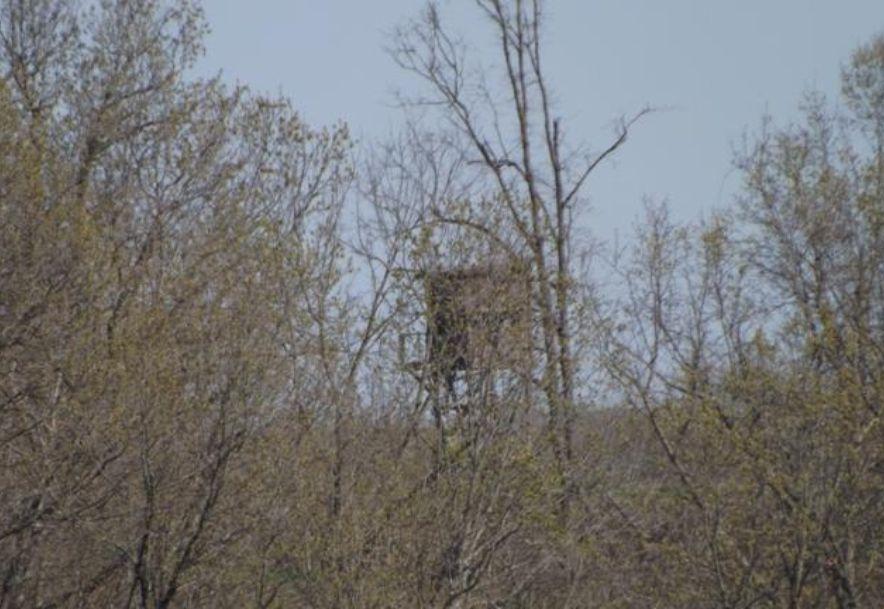 1481 Carlin Ridge Road Rocky Comfort, MO 64861 - Photo 103