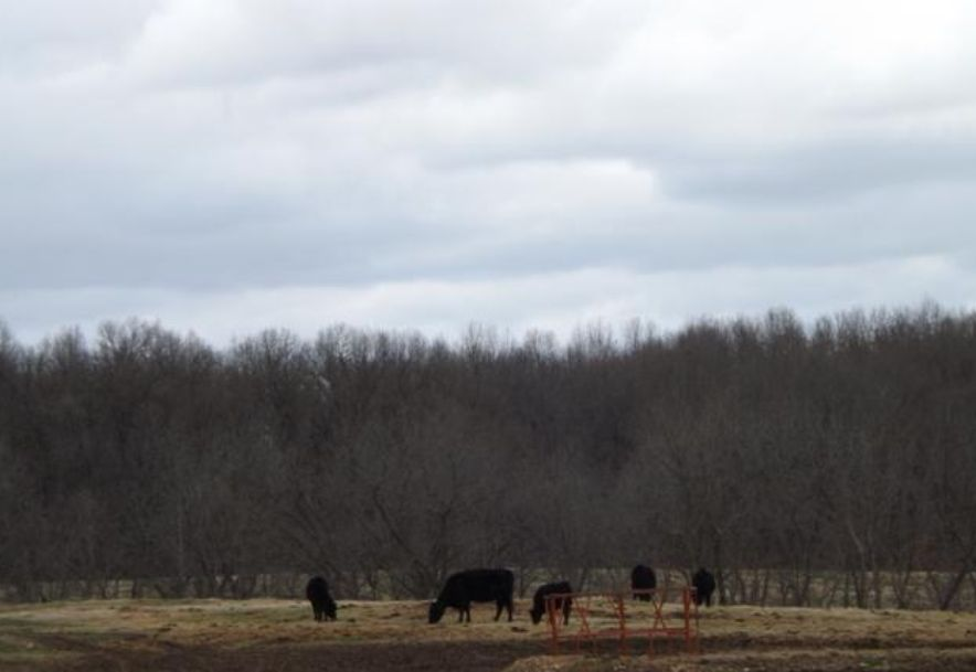1481 Carlin Ridge Road Rocky Comfort, MO 64861 - Photo 31