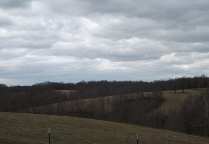 1481 Carlin Ridge Road Rocky Comfort, MO 64861 - Photo 34