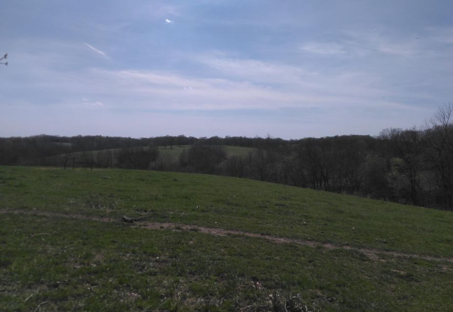 1481 Carlin Ridge Road Rocky Comfort, MO 64861 - Photo 44