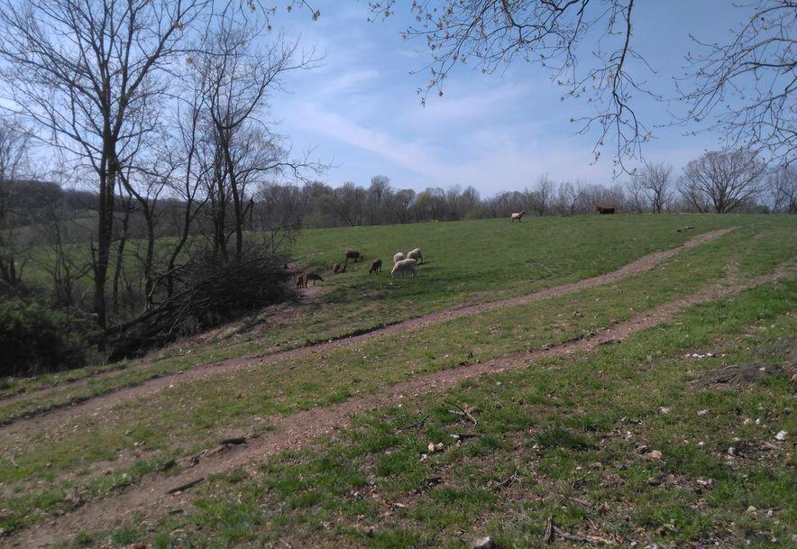 1481 Carlin Ridge Road Rocky Comfort, MO 64861 - Photo 49