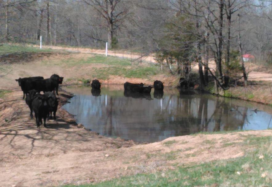 1481 Carlin Ridge Road Rocky Comfort, MO 64861 - Photo 57