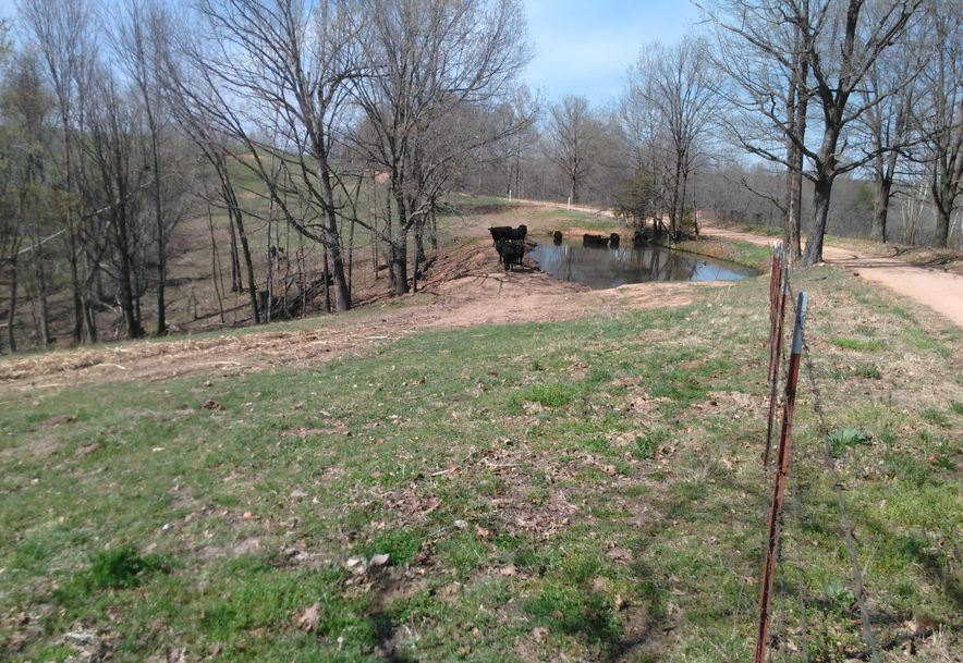 1481 Carlin Ridge Road Rocky Comfort, MO 64861 - Photo 58