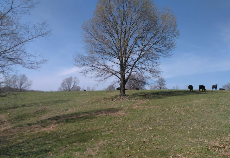 1481 Carlin Ridge Road Rocky Comfort, MO 64861 - Photo 63