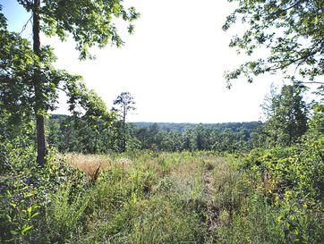 Tbd County Road 5150 West Plains, MO 65775 - Image 1
