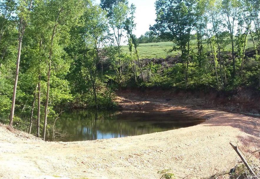 2811 Pumpstation Rd Anderson, MO 64831 - Photo 23