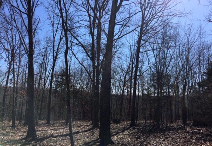 17446 Longview Road Elk Creek, MO 65464 - Photo 51